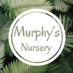 Murphy's Nursery