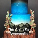 The Cake Stop